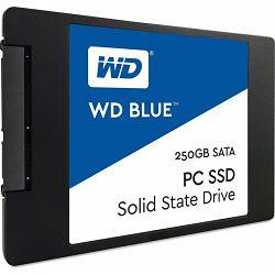 SSD 250GB Western Digital WD Blue PC SSD SATA 2.5